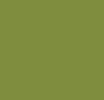 V10 - pravá kůže světle zelená /U50/